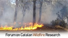 Forum on Catalan Wildfire Research